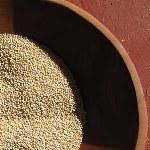 La dieta dei cereali minori - Quinoa