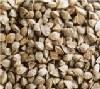 La dieta dei cereali minori - Grano saraceno